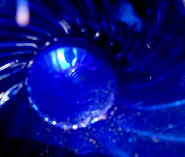 Inside Blue Vase ⓒBearspawprint2014