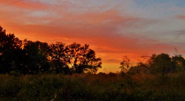 November Sunset North Florida  ⓒBearspawprint2014