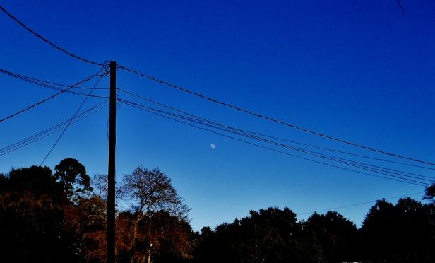 Moon viewed from Yulee, Florida ⓒBearspawprint2014