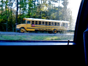 School Bus,   ⓒBackSeatPhotography2014