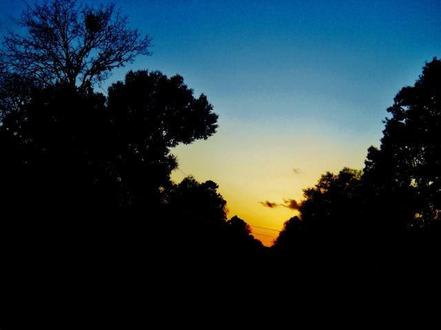 Sunset  Mid December 2014…ⓒBearspawprint2014