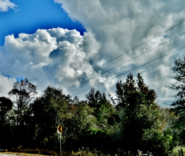 That blue is too intense.  Quick!! More Clouds!  ⓒBearspawprint2014