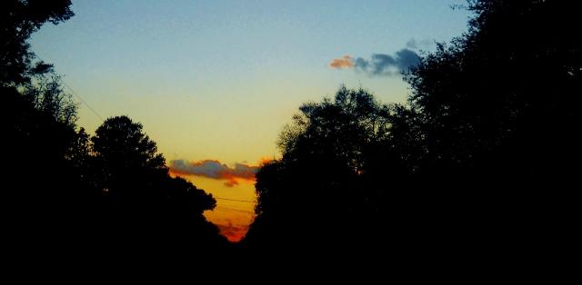 DECEMBER SUNSET  ⓒBearspawprint2014