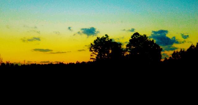 YULEE SUNSET  ⓒBearspawprint2014