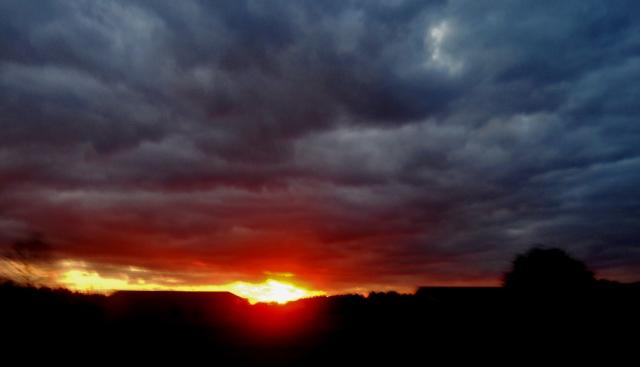 sunset under returning winter ⓒBearspawprint2015  01.27.2015
