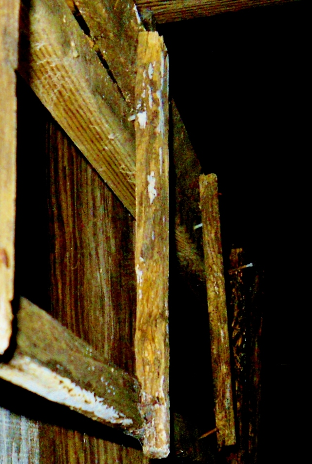 Child constructed ladder.  Hanging here for many years. ⓒBearspawprint2014