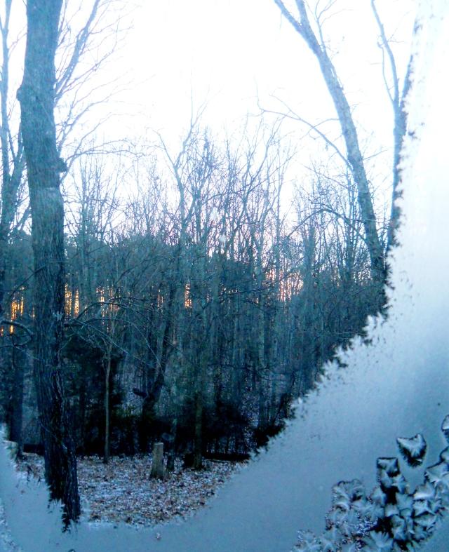 January  Dawn ⓒBearspawprint2014  2014-01-29 2014   Huntsville