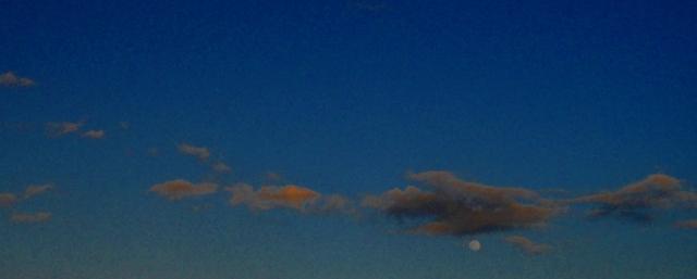 Moon Rise  ⓒBearspawprint2015