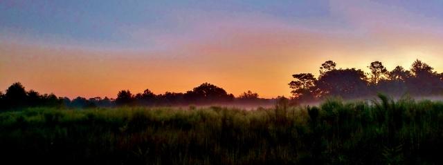 September Dawn ⓒBearspawprint2016