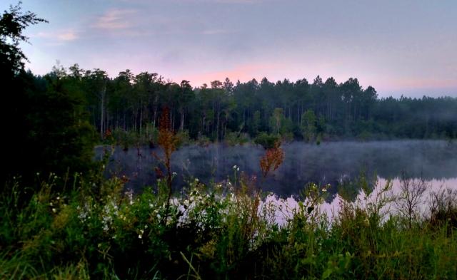 September Dawn Over Water ⓒBearspawprint2016