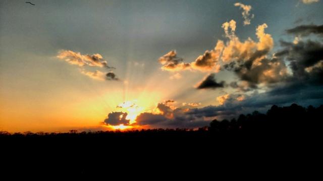 Sunset   ⓒBearspawprint2017